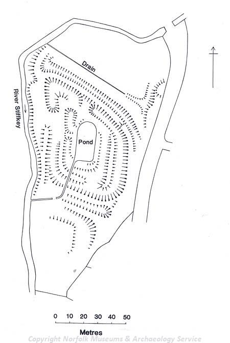 Earthwork plan of medieval fishponds.