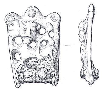 A Late Saxon stirrup strap mount from Beighton