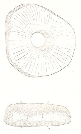 A Neolithic or Bronze Age quartzite macehead from Belton