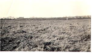Photograph of Neolithic long barrow on Broome Heath looking north. Note the figure standing beside the barrow for scale.