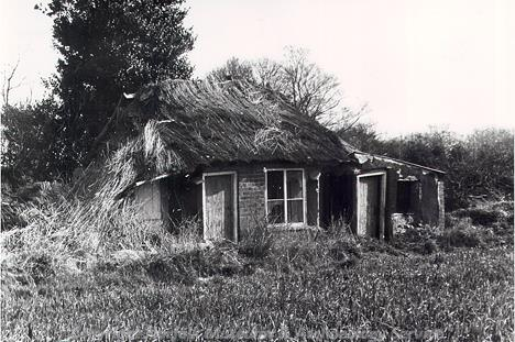 Photograph of a 19th century house constructed of puddled clay and straw with a skin of bricks added to the south wall in the 19th century. This type of construction is typical of vernacular architecture in the Broads.