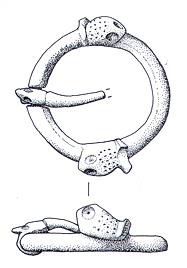 A medieval annular brooch with animal head decoration from Fransham