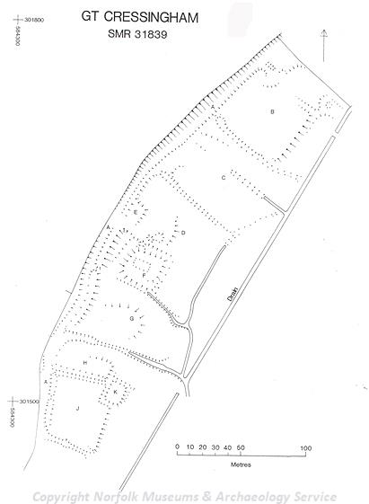 Plan of earthworks of a possible medieval moated site at Great Cressingham.