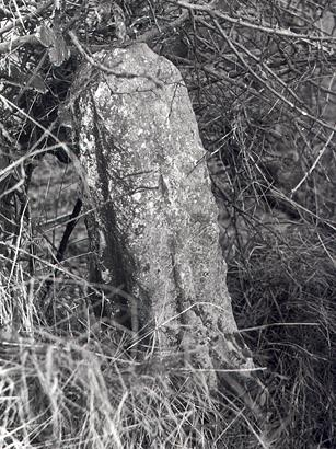 Photograph of a Honing Cross, a fragment of a 15th century stone cross.