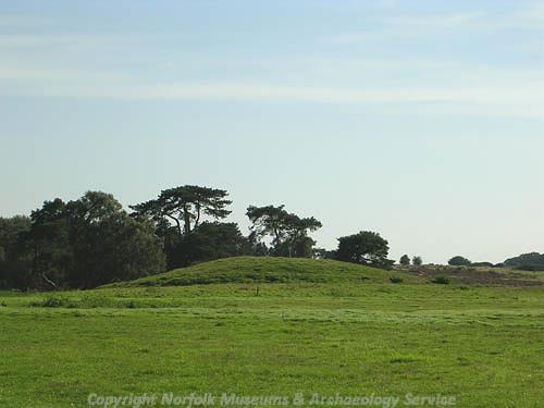 Photograph of Bell Hill Bronze Age round barrow, Little Cressingham.