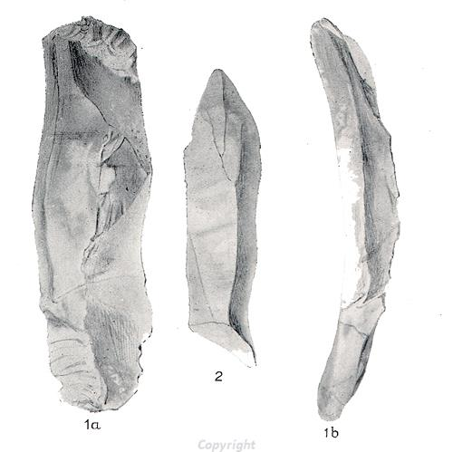Drawing of Mesolithic flints found at East Wretham.