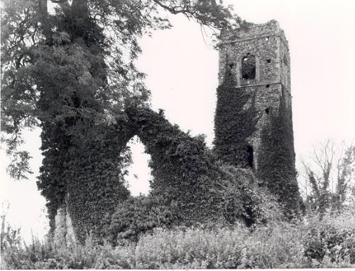 Photograph of the ruins of St Martin's Church, Shotesham.