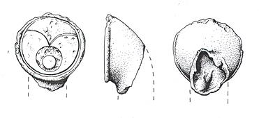 Drawing of an Iron Age linch pin from Tattersett.