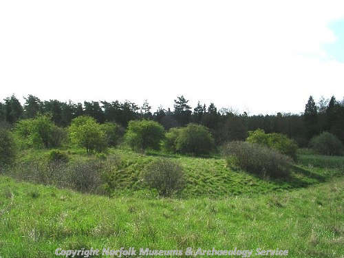 The earthworks of a moated medieval manorial site and associated complex, part of Santon deserted medieval village.