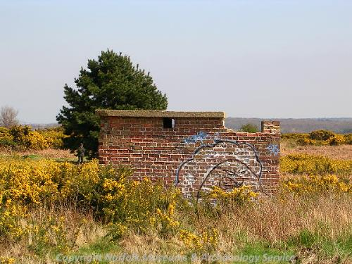 Part of the World War Two radar station on Bard Hill