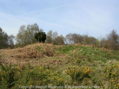 The earthworks of a Bronze Age round barrow.